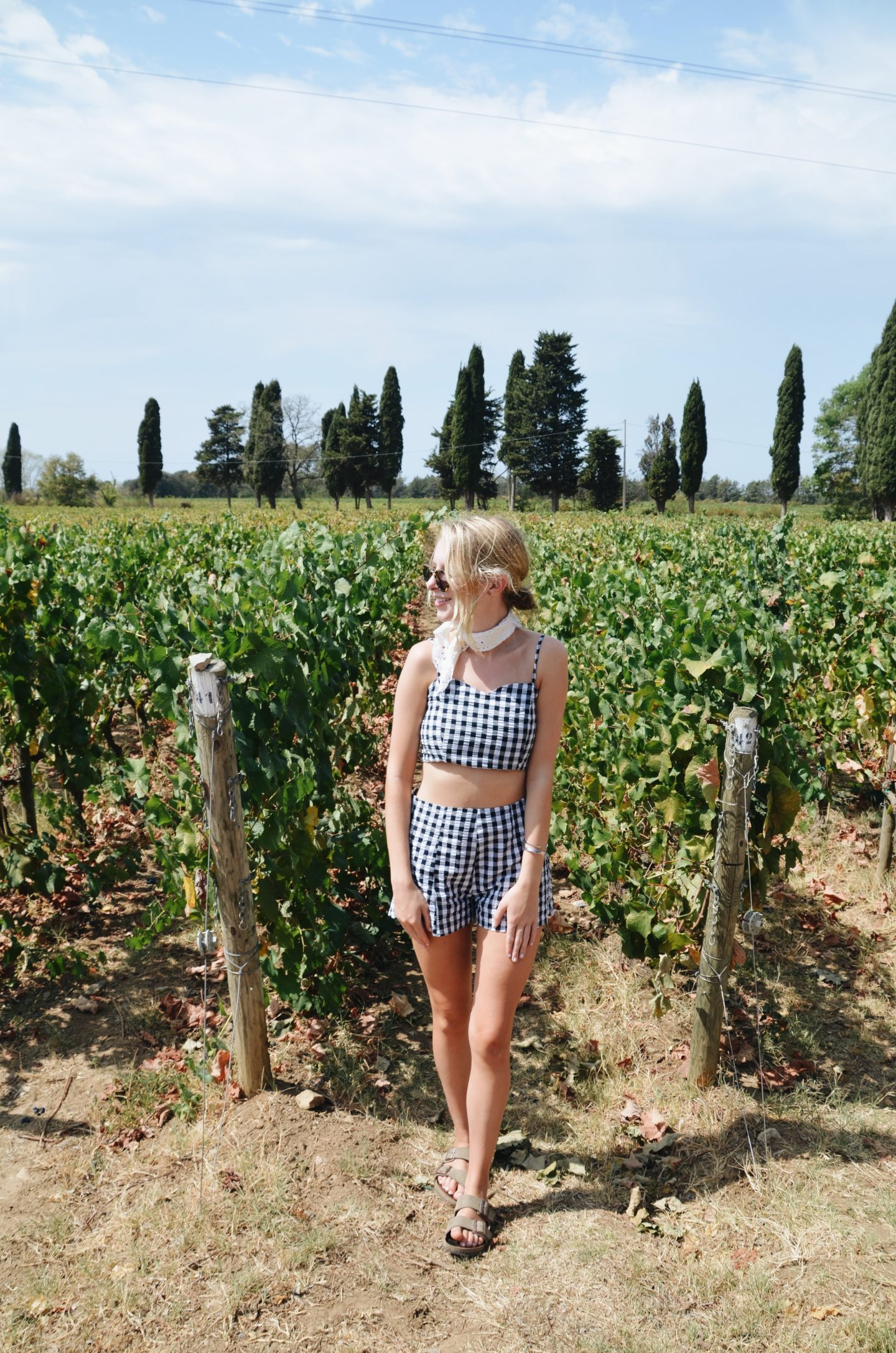 Tuscan Vineyards and Gingham Sets